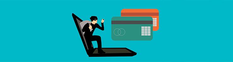 DBS Checks and Fraud
